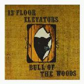 13TH FLOOR ELEVATORS-Bull Of The Woods