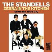 STANDELLS-Zebra In The Kitchen/Someday You'll Cry