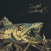 RAGGED BARRACUDAS-Ragger Barracudas