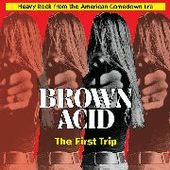 V/A-Brown Acid: The First Trip