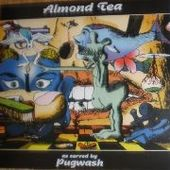 PUGWASH-Almond Tea (brown)