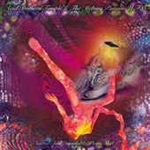 ACID MOTHERS TEMPLE & THE MELTING PARAISO U.F.O.-Sacred And Inviolable Phase Shift
