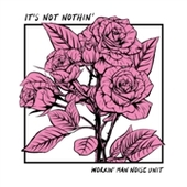 WORKIN' MAN NOISE UNIT-It's Not Nothin'