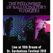 FELLOWSHIP OF HALLUCINATORY VOYAGERS-Live At The 16th Dream Of Dr. Sardonicus Festival 2017