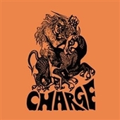 CHARGE-s/t