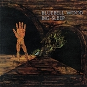 BIG SLEEP-Bluebell Wood