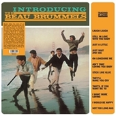 BEAU BRUMMELS-Introducing The Beau Brummels