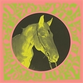MELODY FIELDS-Broken Horse EP