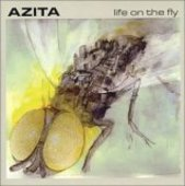 AZITA-Life on the fly
