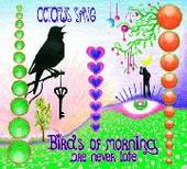OCTOPUS SYNG-Birds of Morning are never late