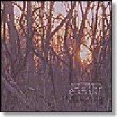 SEHT-The Green Morning