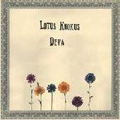 LOTUS KROKUS-Deva