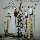 PRIMORDIAL UNDERMIND-Yet more wonders of the invisible world