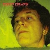 POLLARD, ROBERT-From a compound eye