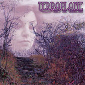 TERRAPLANE-Into the unknown