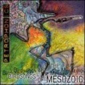BIRDSONGS OF THE MESOZOIC-Petrophonics