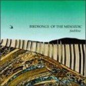BIRDSONGS OF THE MESOZOIC-Faultline